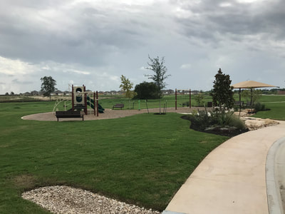 Amenity Center | Playground and grass